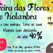14366_2017_planejamento_campanha_3_feira_das_flores_apae_tag_pit_stop